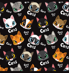 love cute cats pattern vector image