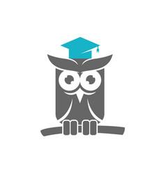 Owl hat graduate logo design template isolated vector