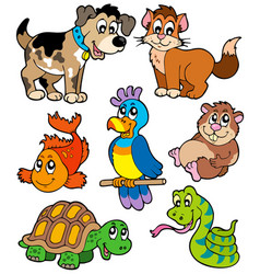 pet cartoons collection vector image