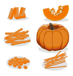 The theme pumpkin vector