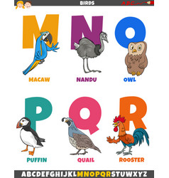 Cartoon alphabet set with birds animal characters vector