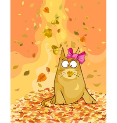 Cartoon cat in the autumn fallen leaves vector