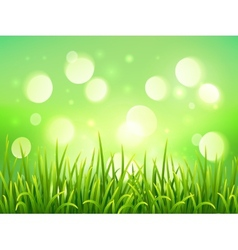 Green grass on bokeh light effect background vector image