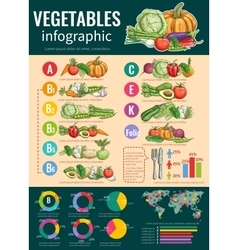 Healthy vegetables and vitamins infographics vector image