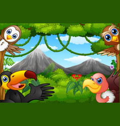 wild birds cartoon with a mountain in a forest vector image