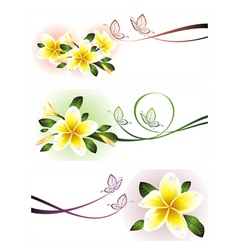 romantic floral banners vector image