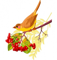 autumn bird vector image