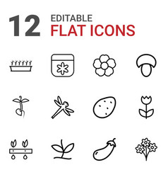 12 plant icons vector image