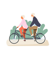 active grandparents ride tandem bike in summer vector image