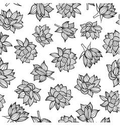 black on white waterlilies or lotus flowers vector image
