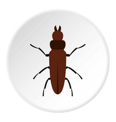 Cockroach icon circle vector
