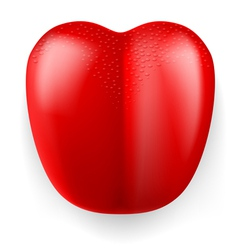 Red plastic tongue vector