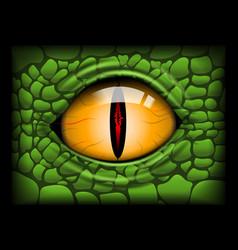 Scary eye a reptile image vector