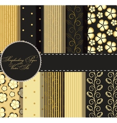 set of beaautiful gold and black paper for vector image