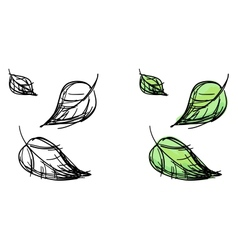 sketch of falling leaves vector image