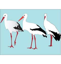 Storks collection - vector