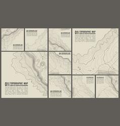 topographic pattern texture set grey vector image