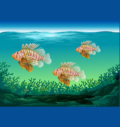 Underwater scene with three fish swimming vector