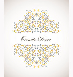 ornamental decorative elemen vector image
