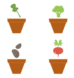 Cute beautiful seeds collection isolated on white vector image
