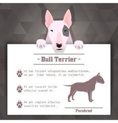 bull terrier dog banner vector image