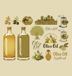 set of design elements on the theme of olive oil vector image vector image