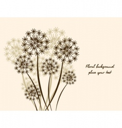 floral background dandelion vector image