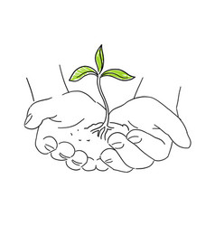 Hands with young plant shoots save nature sketch vector