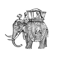 Set india culture elephant and temple a woman vector
