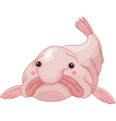 blob fish vector image vector image