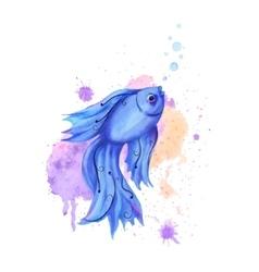 Watercolor fish vector image vector image