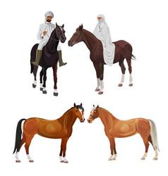 arabian riders and horses vector image