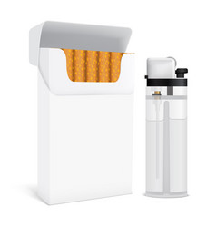 Cigarettes pack and lighter set vector