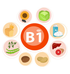 Infographic set vitamin b1 and useful products vector