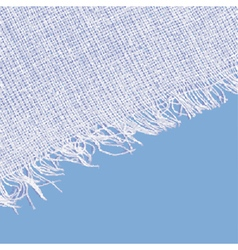 Canvas texture with fringe White blue color vector image vector image