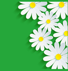 3d flower chamomile spring background abstract vector