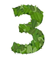 3 number leafs vector image