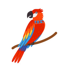 Colorful tropical parrot beautiful bird with vector