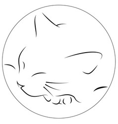 contours of the cat who sleeps putting his face vector image
