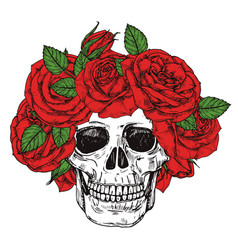 Hand drawn skull with roses head wreath vector