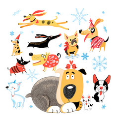 New year set of different funny dogs vector