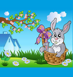 spring meadow with bunny in basket vector image