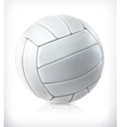 Volleyball icon vector image