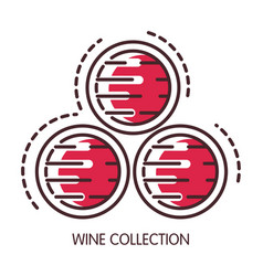 wine collection conserved in wooden barrels vector image