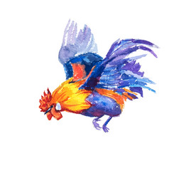 Hand painted watercolor of flying bantam on white vector