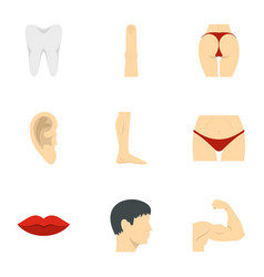outer parts of body icons set flat style vector image vector image