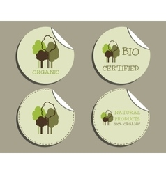Set of unusual green organic labels - stickers for vector image vector image