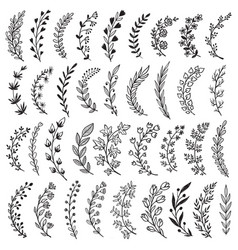 Big set hand drawn plants and branches vector