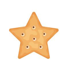 cracker chips star shape isolated on white vector image