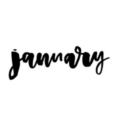 january ink hand drawn calligraphy brush painted vector image